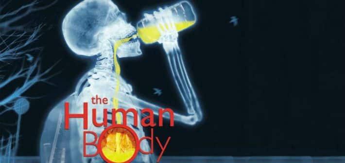 HUMAN BODY IMAX